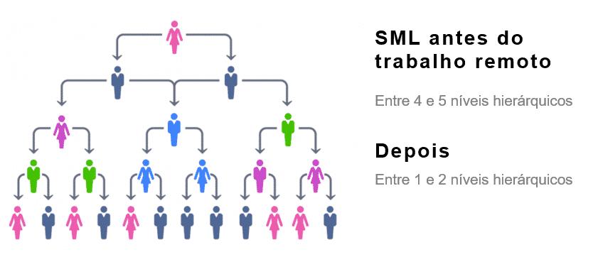 Niveis hierarquicos SML